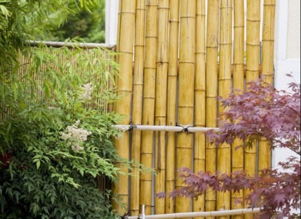 Cerca de bambú para el jardín o la terraza 1