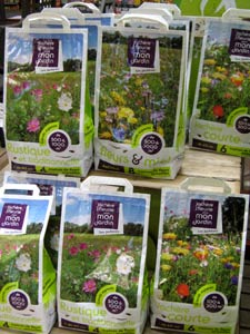 Prado florido en tu jardín 2