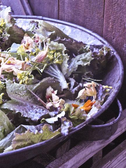 Flores al plato 3