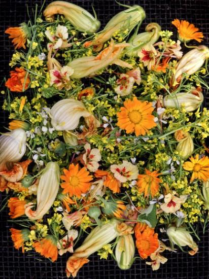 Flores al plato 1