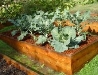 imagen Cómo ahorrar esfuerzo en el jardín