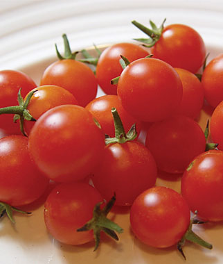 Jardiner a by davis jardineria by davis - Tomates cherry en maceta ...