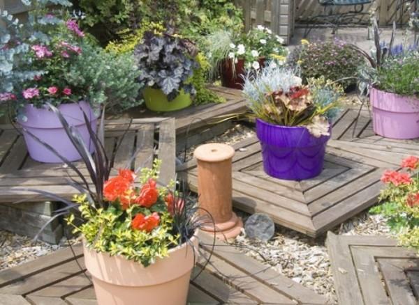 Macetas con flores todo el a o - Plantas exteriores todo el ano ...