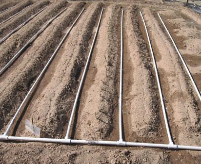 sistema de riego por goteo con tuber as de pvc