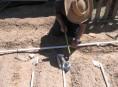 imagen Sistema de riego por goteo con tuberías de pvc
