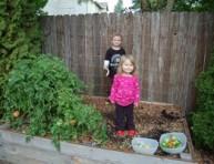 Gu a de jardiner a informaci n t nicas y consejos tiles - Utiles de jardineria ...