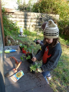 Jardinería para niños3