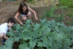 Jardinería para niños4