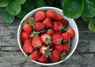 Momento para la recolección de frutas 2