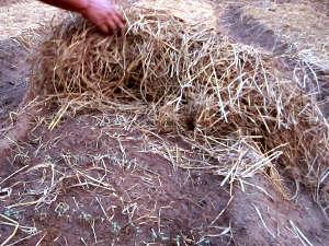 Uso de la paja agrícola en el jardín 1