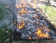 imagen El uso del fuego en jardinería