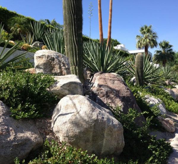 Ideas De Diseño De Jardines Residenciales: Un Jardín Desértico En Palm Springs