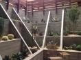 imagen Cactus en el jardín, una tendencia moderna