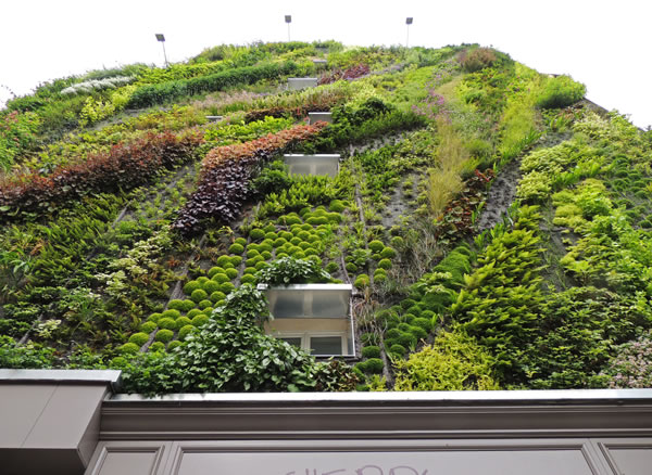Jardín vertical en París 5