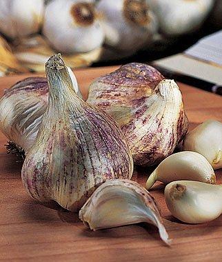 verduras-y-hortalizas-de-otono-11