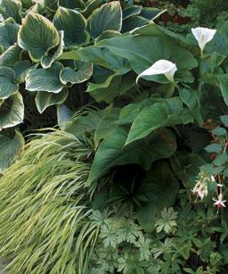 Ambientes en el jardín 2