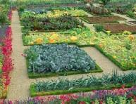 imagen Ideas simples para tener un huerto en el jardín
