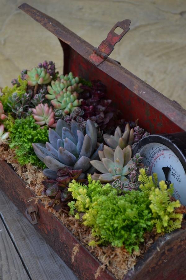 Macetas diferentes para tu jardín 1