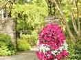 imagen Haz una torre de flores