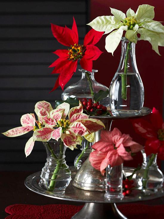 9 ideas de centros navide os con flores naturales - Centros navidenos caseros ...