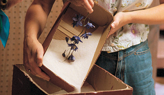 Secar flores con arena 4