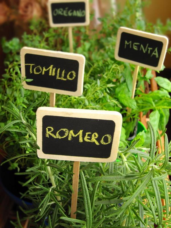 C mo secar las hierbas arom ticas para el invierno - Jardin de aromaticas ...