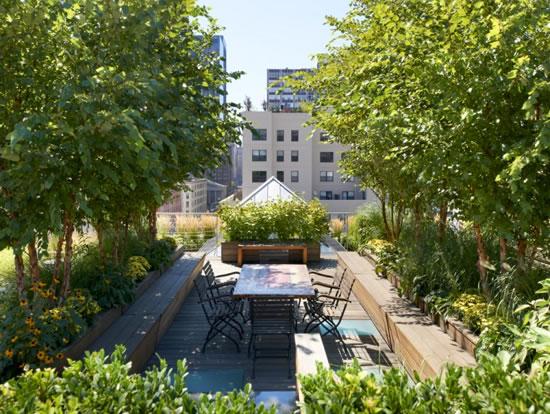 Jardines urbanos 5