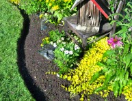 imagen Cómo hacer bordes para macizos de flores