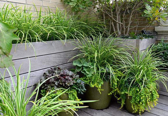 Consejos para un peque o jard n - Como arreglar un jardin pequeno ...