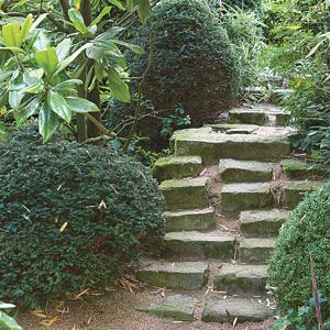 Escaleras en el jardín 4