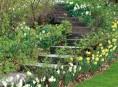 imagen Escaleras en el jardín