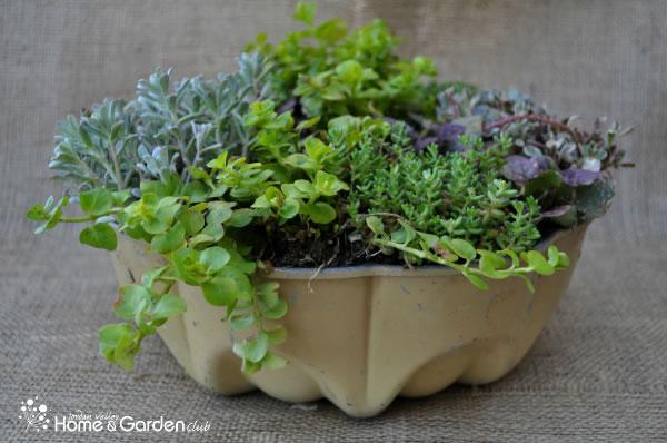 Jardineras de estilo vintage 5