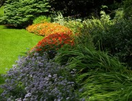 imagen 7 pasos para tener un lindo jardín de bajo mantenimiento