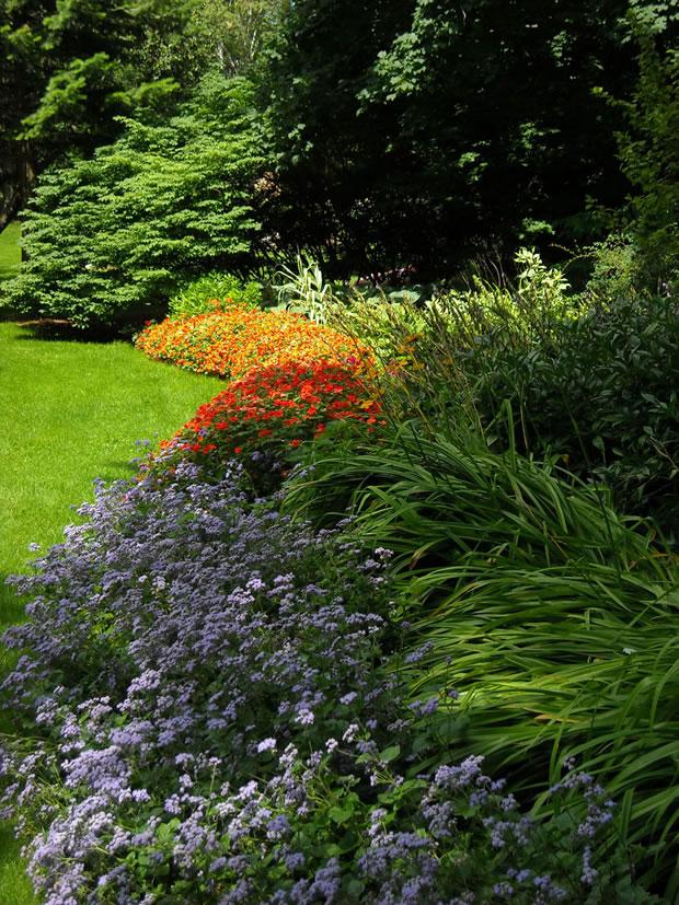 7 pasos para tener un lindo jard n de bajo mantenimiento for Jardines de bajo mantenimiento