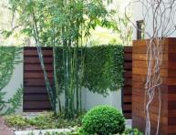 imagen Bambú para modernizar tu jardín