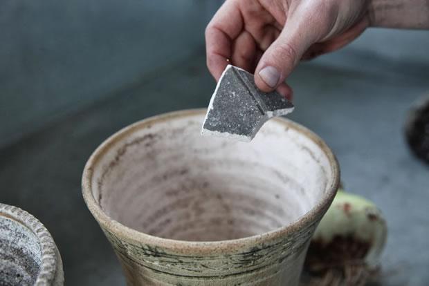 Plantar narcisos y amarilis 5