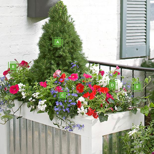 Una jardinera a color todo el a o - Jardineras de colores ...