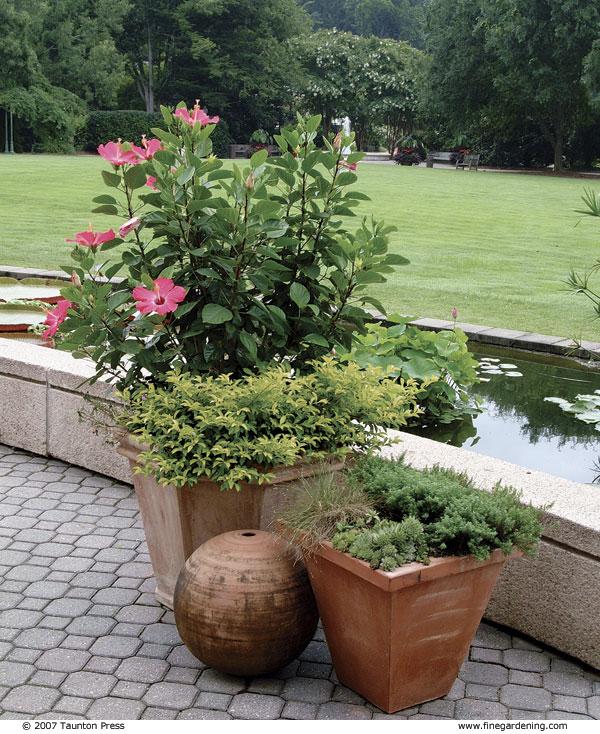 3 formas de decorar con macetas y jardineras - Tipos de jardineras ...