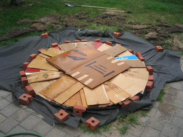 Jardín espiral DIY 4