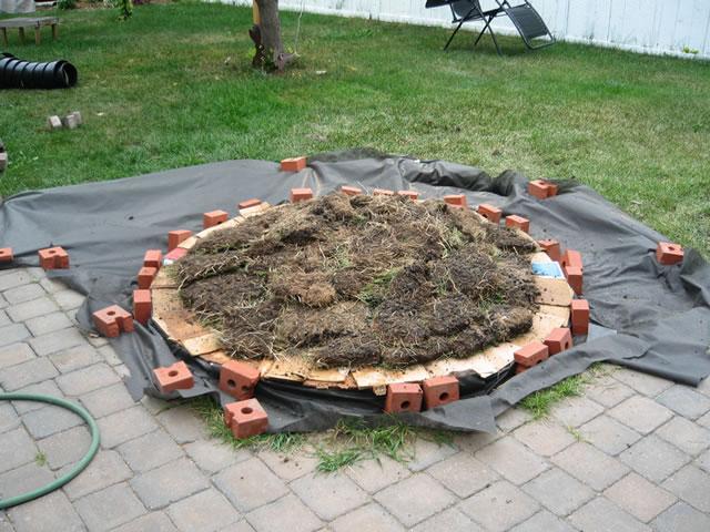 Jardín espiral DIY 5