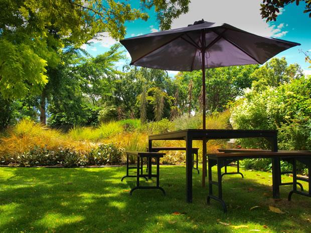 Jardín saludable 1