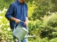 imagen Receta para té de compost