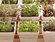 imagen 10 superalimentos que puedes cultivar en tu jardín