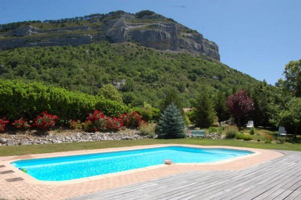 Plantas y césped alrededor de la piscina 1