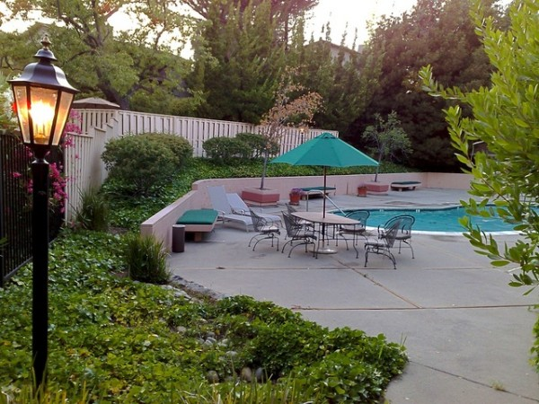 Plantas y césped alrededor de la piscina 3