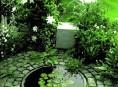 imagen Estanques en el jardín