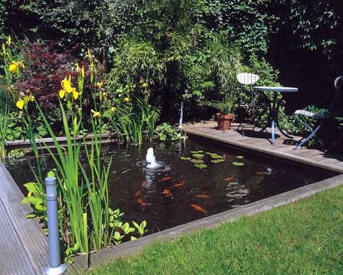 Realizzare un laghetto in giardino aspetti da considerare - Estanques en el jardin ...