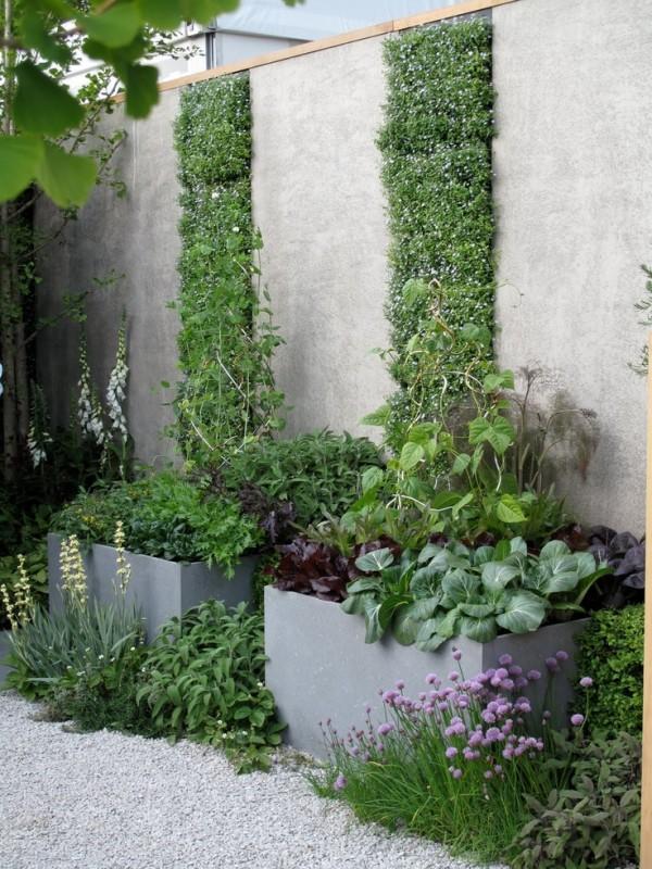 Huerto y jardín 1
