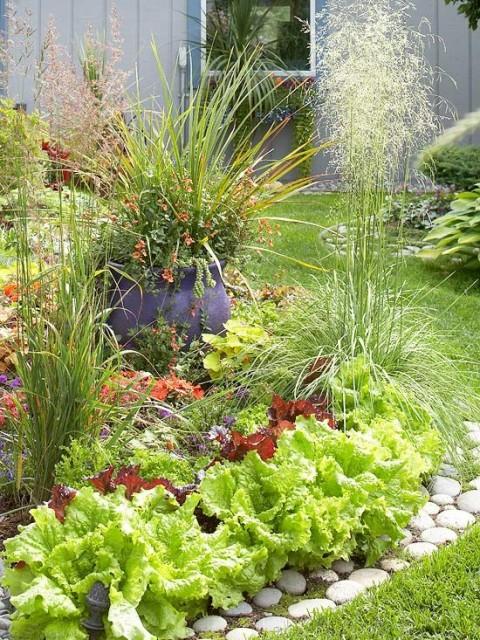 Huerto y jardín 4
