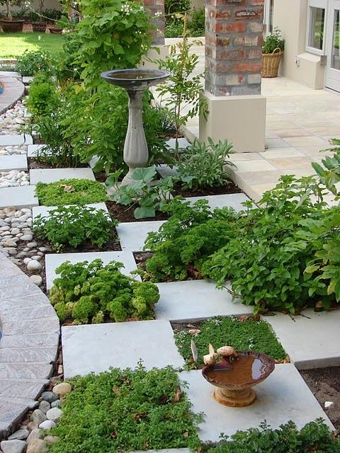 Huerto y jardín 5
